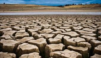Cambio Climático, Siglo XX, Causas, Humanidad