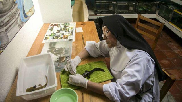 Una monja sentada agarrando un achoque