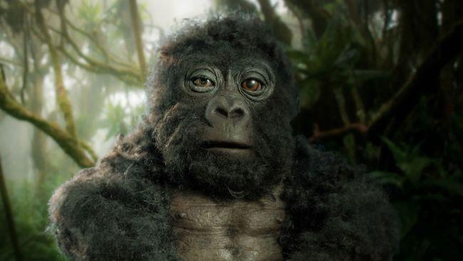 Gorila espia Robot