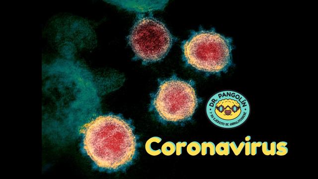 dr-p-coronavirus-thumb