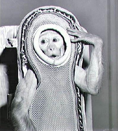 Sam voló a una altura de 88 km en 1958. (Fotografía de la NASA).