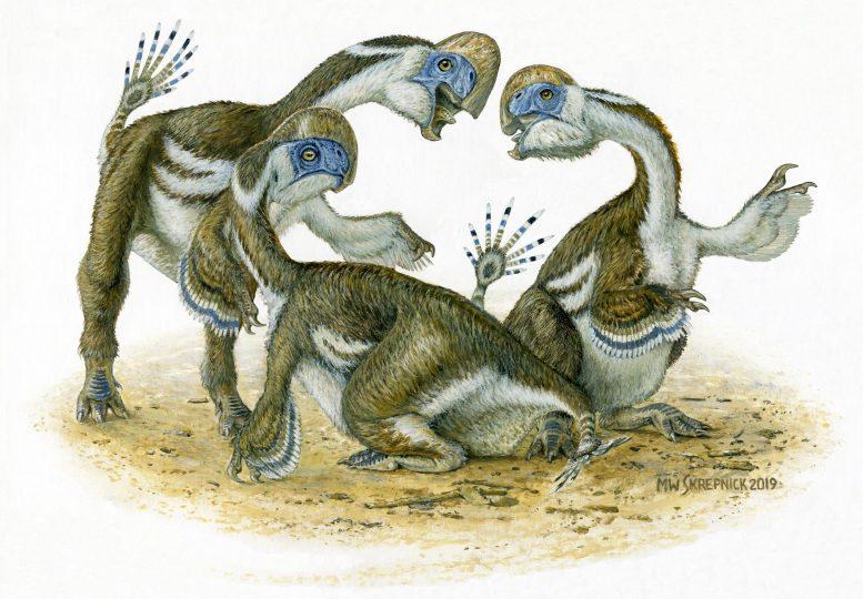 Científicos descubren nueva especie de dinosaurio parecida a un loro gigante: Oksoko avarsan