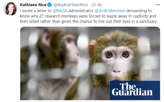 NASA sacrificó 27 monos en 2019 en el centro Ames