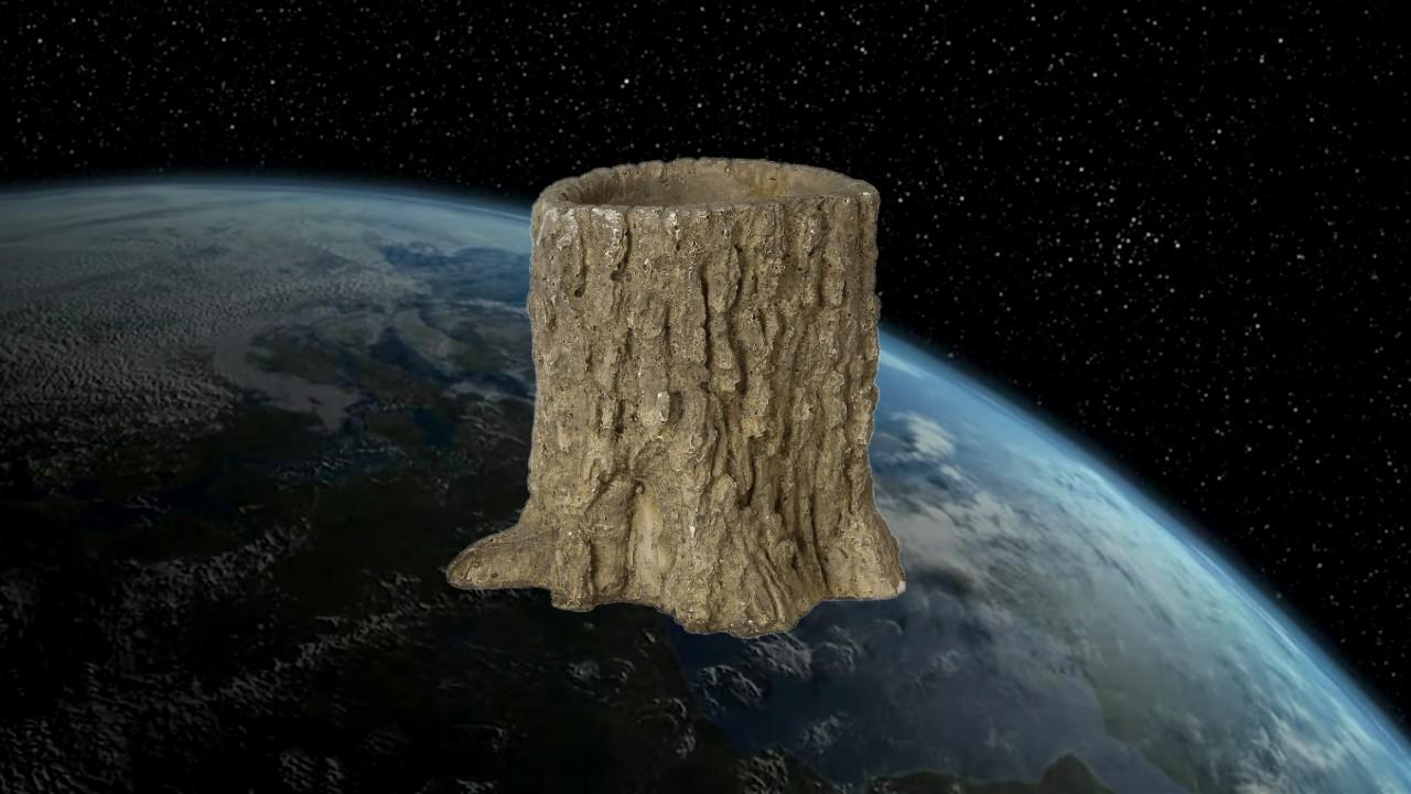 Tronco en el espacio
