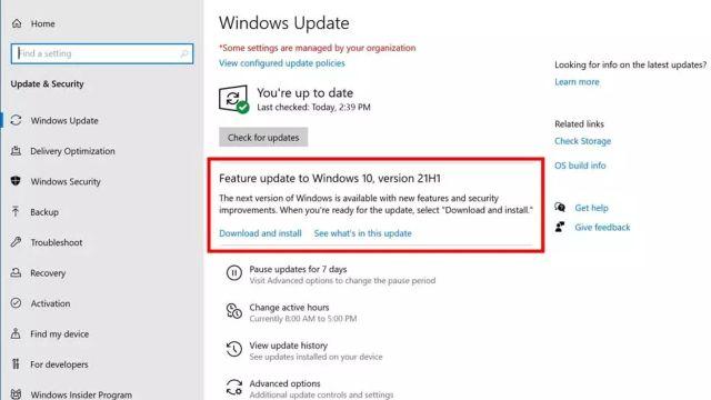 Windows tendra nueva actualizacion