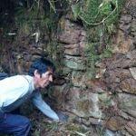 Cusco: Descubren una nueva ciudadela Inca en Perú