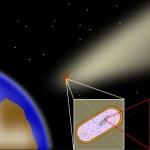 Según estudio: «Organismos extraterrestres podrían haber llegado a la Tierra a través del polvo espacial»
