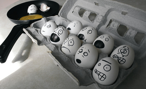 stressed-out-eggs