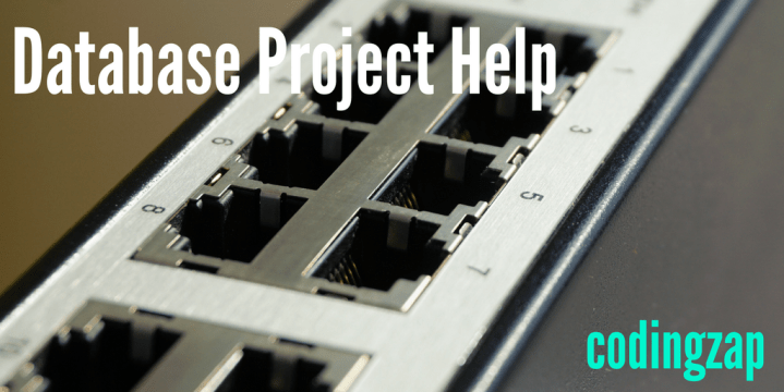 Do my Programming Project- Database project help