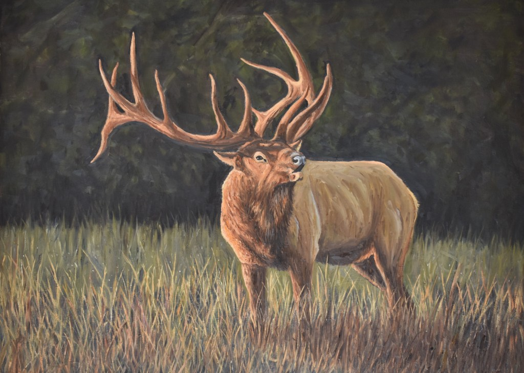 oil painting of a bugling elk