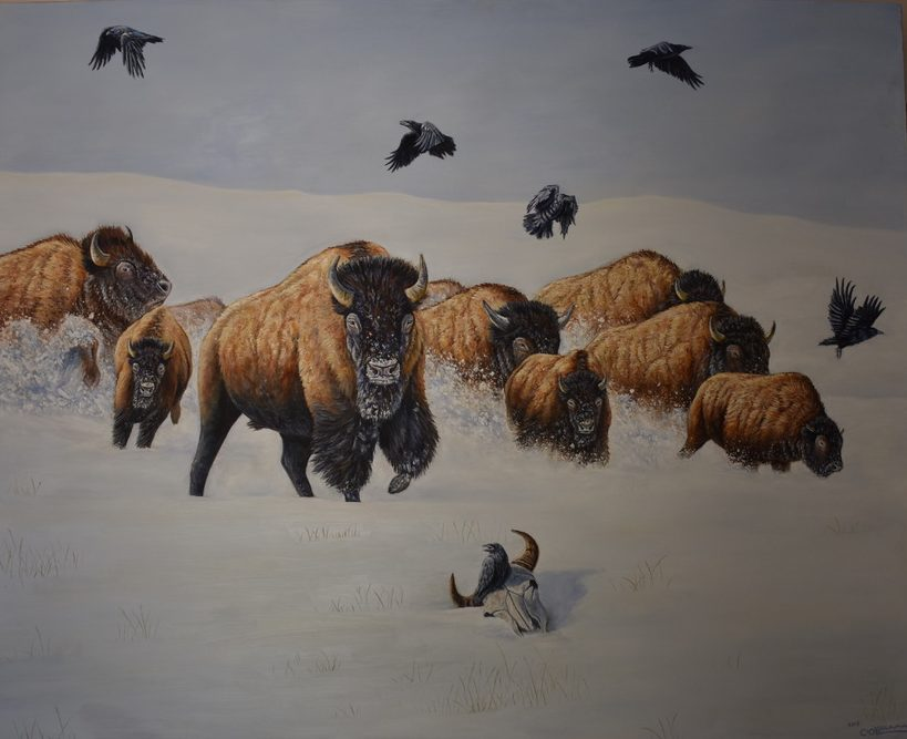 oil painting of a herd of bison and raven on a snowy field