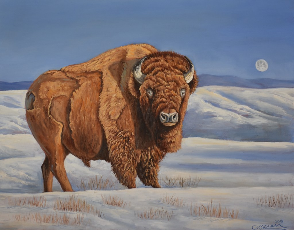 Oil painting of bison buffalo in a snow-covered field with a setting moon