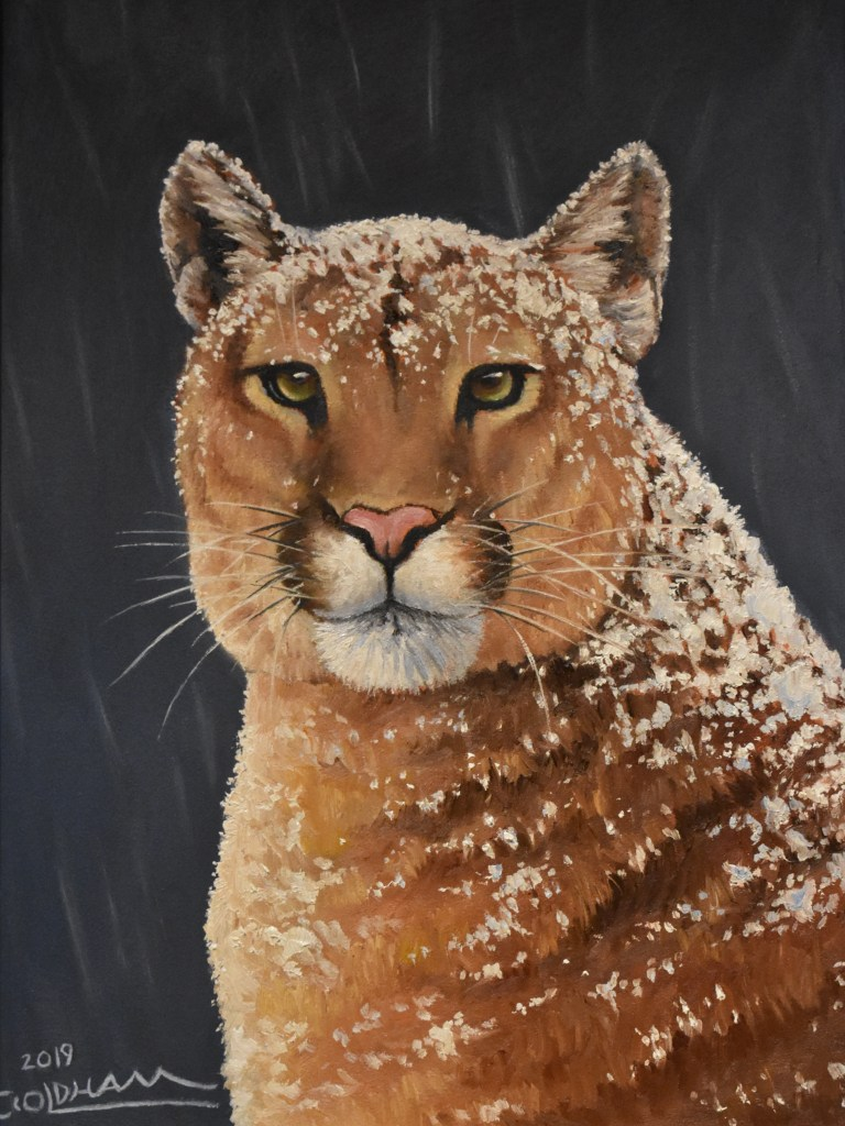 oil painting of mountain lion cougar portrait