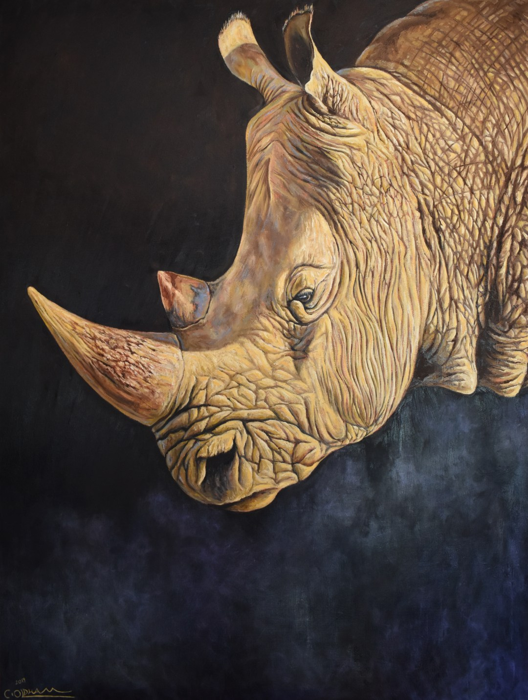 Oil painting of rhinoceros portrait by Cody Oldham