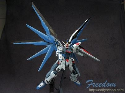 freedom0040