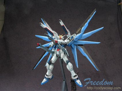 freedom0161