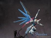 freedom0184