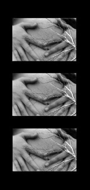 Rebirth by Alecia Stiles - B & W Photograph