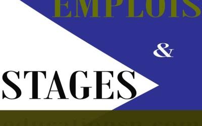 Offres emplois et de stages disponibles du 11 Juillet 2020