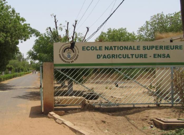 CONCOURS ENSA 2020 : ECOLE NATIONALE SUPERIEURE  D'AGRICULTURE