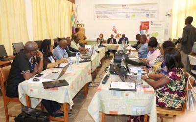 Appel à candidatures : Formation des Secrétaires généraux d'Afrique de l'Ouest et d'Afrique centrale et Grands Lacs