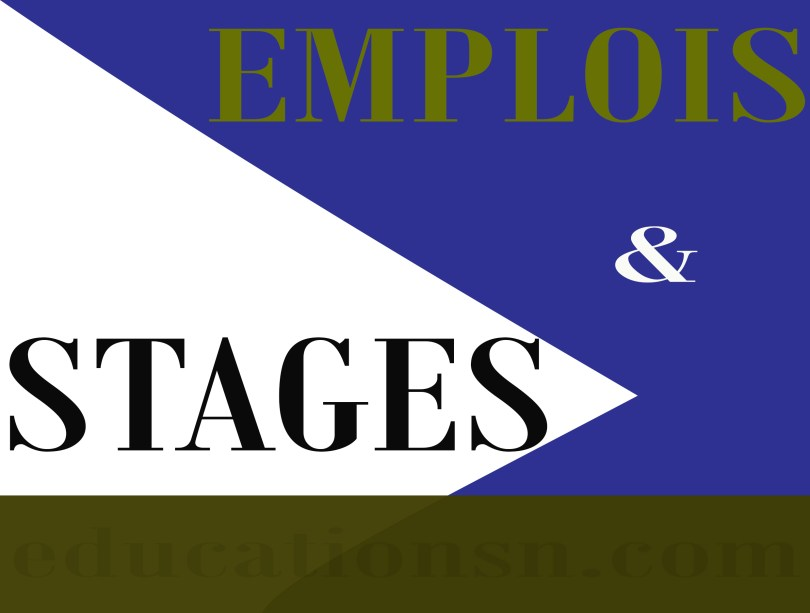 Résumé des Offres emplois et de stages disponibles du 20 Novembre 2020