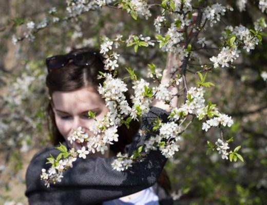 Bucketlist Frühling titel - coeurdelisa