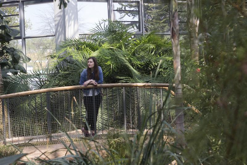 Palmengarten 6 - coeurdelisa