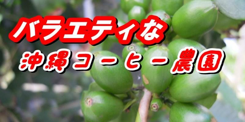 沖縄コーヒー農場