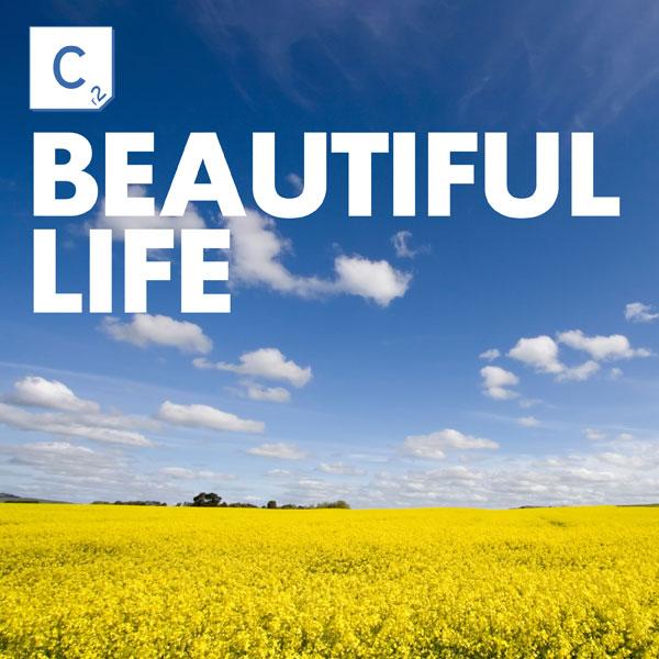 A Beautiful Life   coffee4thesoul.net