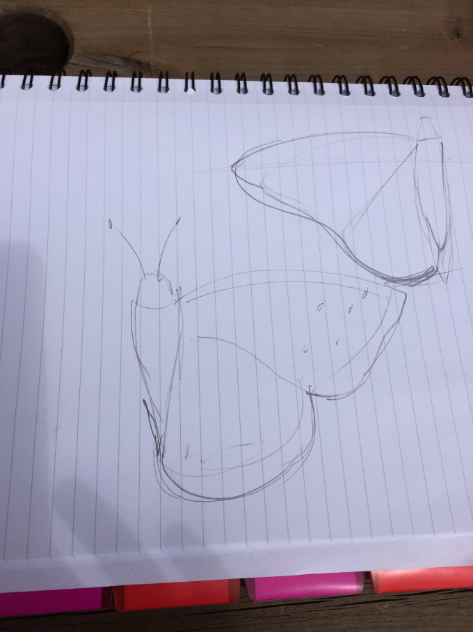 Pencil drawings on lined paper of a butterfly