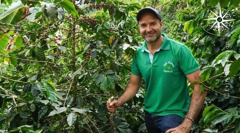 Pereira Coffee Experience