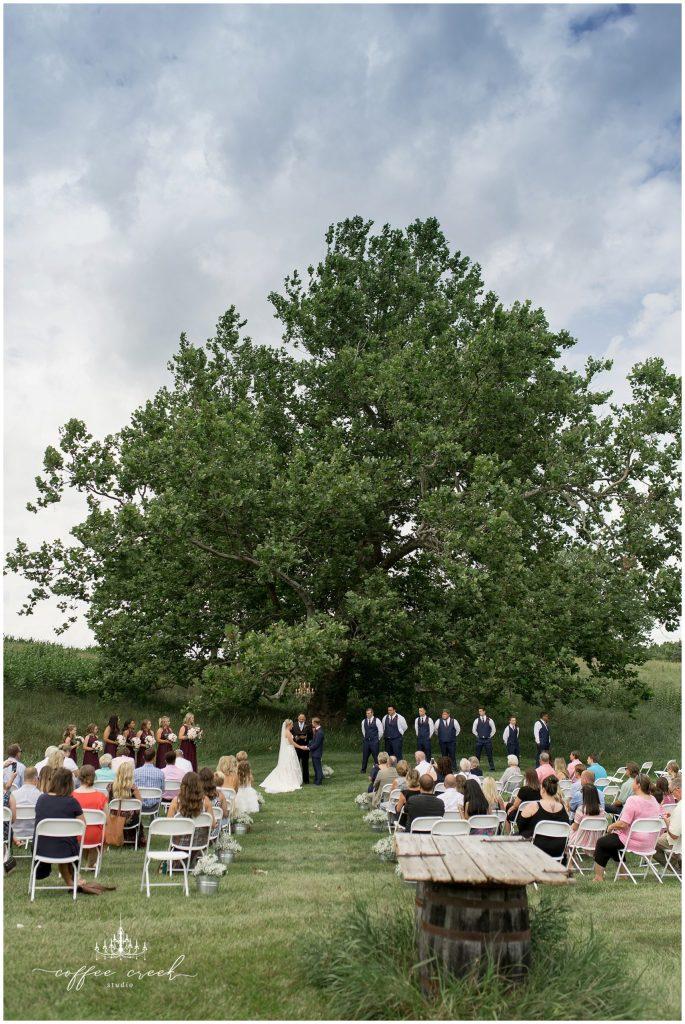 sycamore tree wedding ceremony