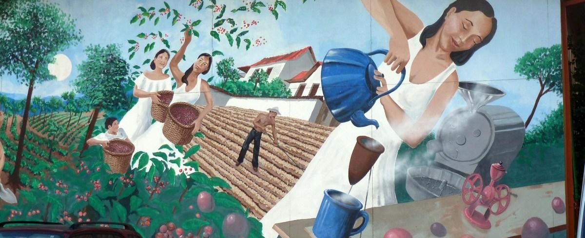 咖啡生产国: 中美洲和加勒比