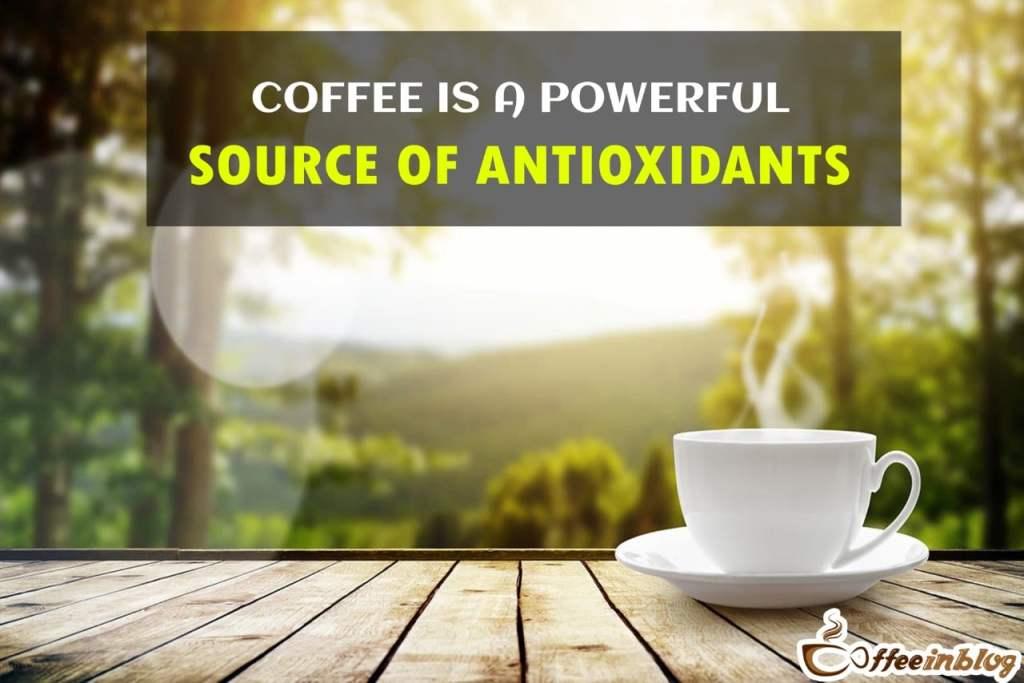 Coffee is a powerful source of antioxidants