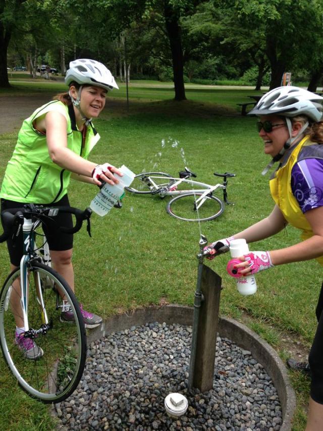 Team Sakura and the Tour the Pink