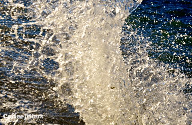 splash - CoffeeJitters.Net