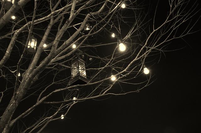 tree with lantern