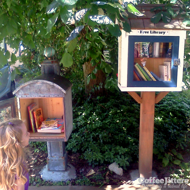 little free libraries for adults and kids