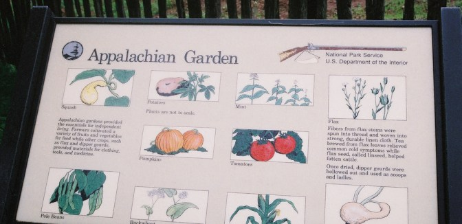 Appalachian Garden