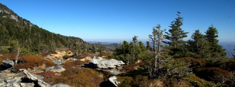 Grandfather Mountain Panorama