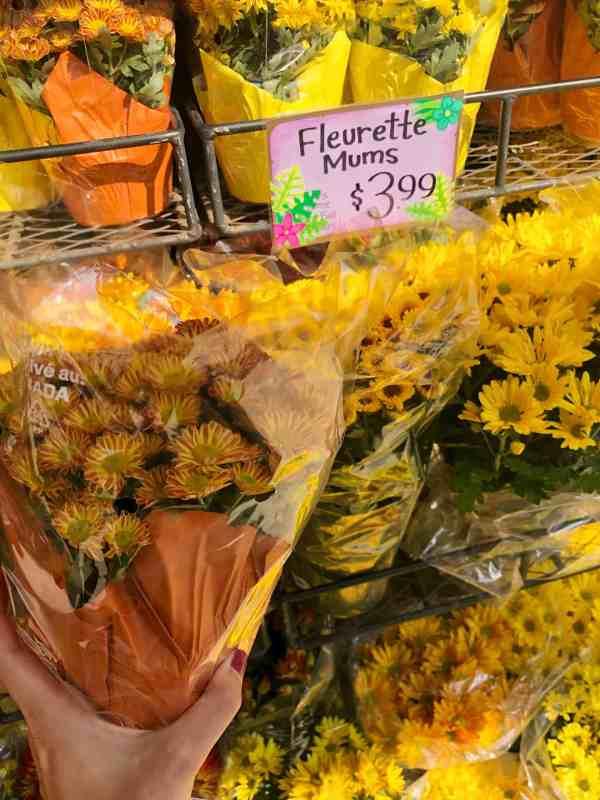 Trader Joe's Fall Favorites #shoppinglist #recipes #pumpkin