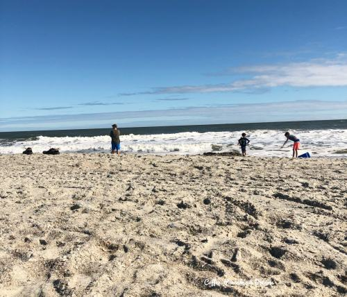 Visiting Tybee Island with Kids