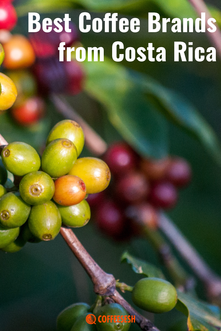 The Best Coffee Brands from Costa Rica on the Market