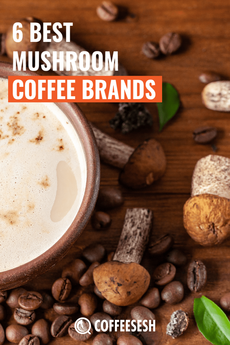 6 Best Mushroom Coffee Brands Available in the Market