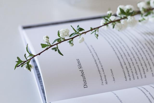 Helsinki Contempoary books blogi-4