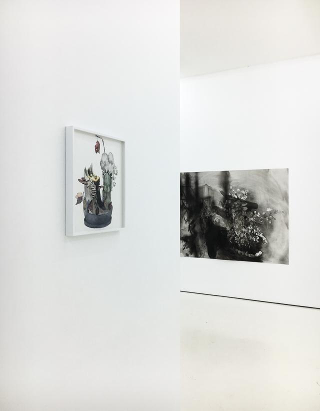 Nykytaidetta hankkimassa Helsinki Contemporary