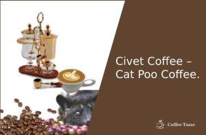 Civet Coffee – Cat Poo Coffee