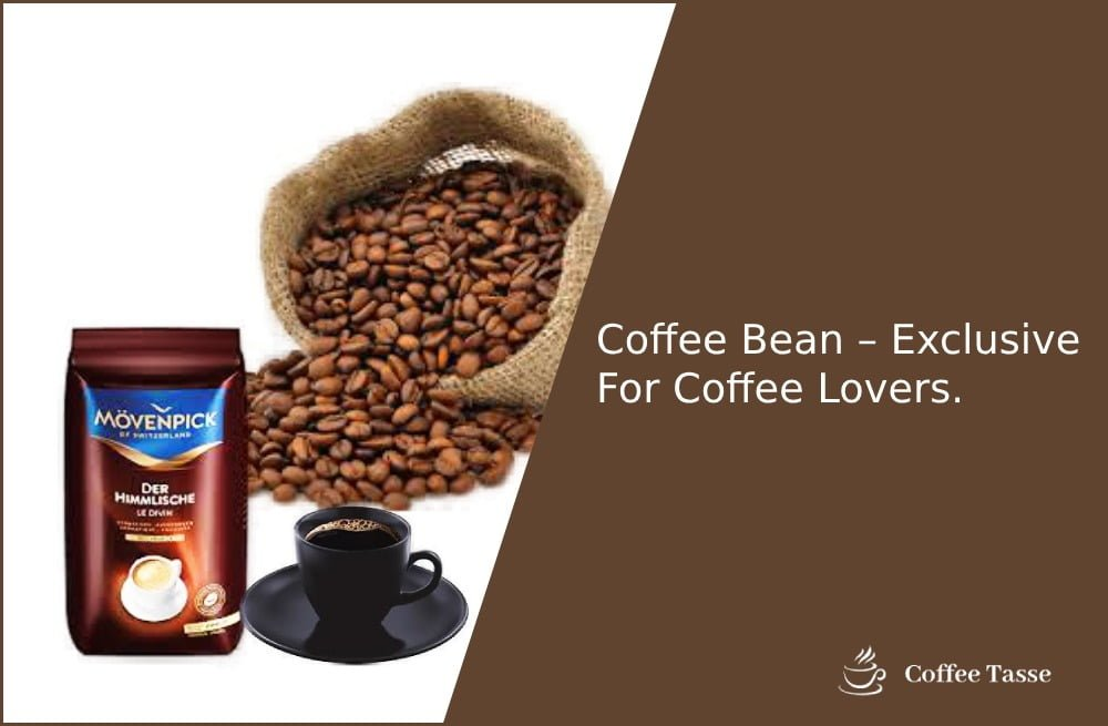 Coffee Bean – Exclusive For Coffee Lovers