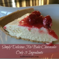 Simply Delicious No-Bake Cheesecake: Only 5 Ingredients